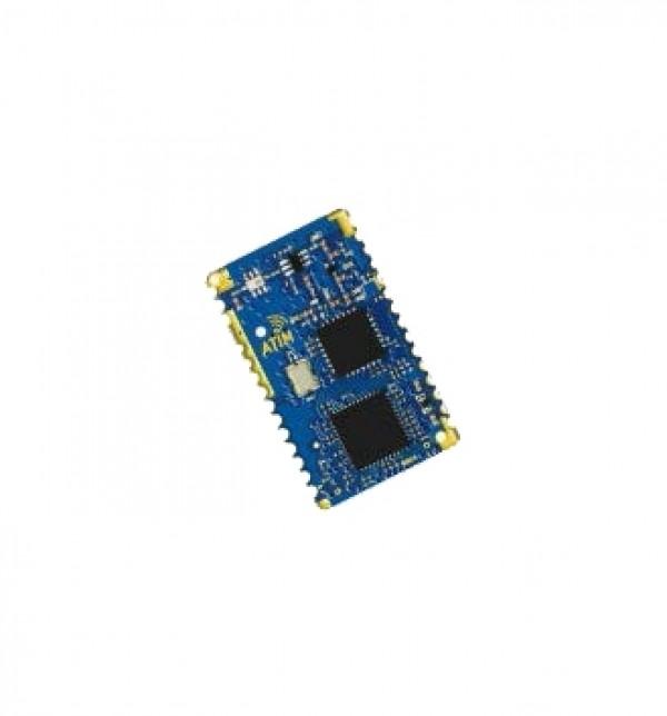Module ARM NANO LoRa Wan + P2P