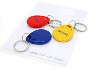 Lot de 5 Tags RFID 125kHz 110990035